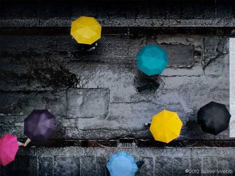 Umbrella Mandalas - photo by Steve Webb