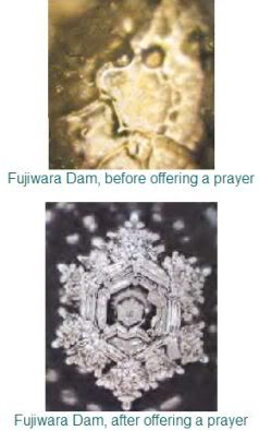 Before/After Offering a Prayer