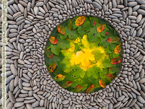 Leaves & Stones Mandala by Dietmar Voorwold