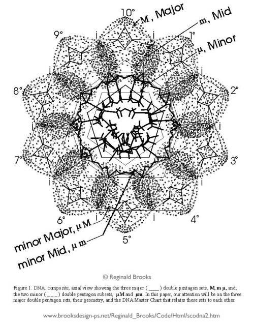 Geometry of Humans Mandala by Reginald Brooks