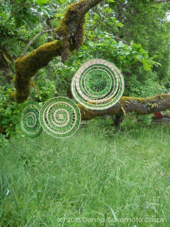 Reed Mandalas by Donna Sakamoto Crispin