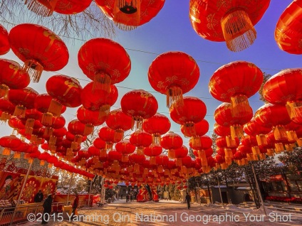 Chinese Lantern Mandalas - Photograph by Yanming Qin