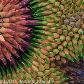detail - Cycad Mandala by Jennifer Maestre