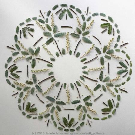 Greenery Mandala by Janelle Amos