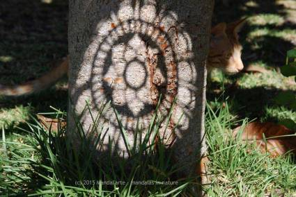 Shadow Mandala