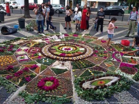 Mandalma: Mandalas na Natureza Mandala