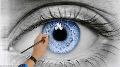 Blue Iris by Stefan Pabst
