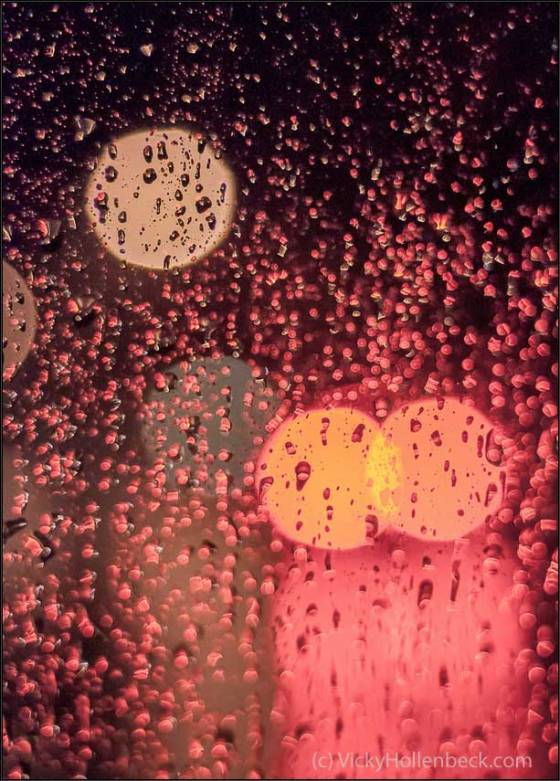 Raindrops by Vicky Hollenbeck