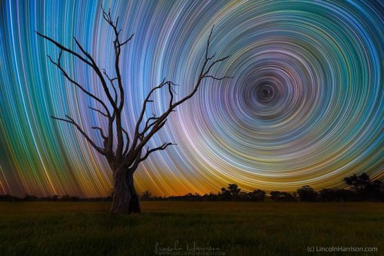 Star Trails by Lincoln Harrison