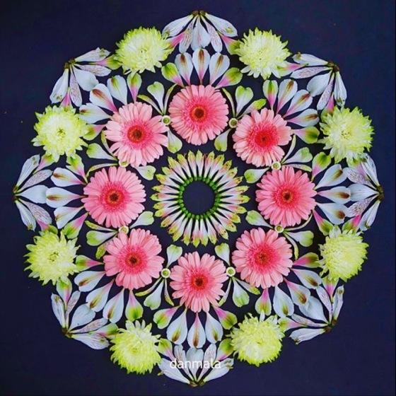 Flower Mandala by Kathy Klein - Danmala