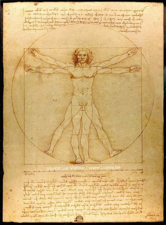 da Vinci's Vitruvian Man - photo source: www.Lucnix.be