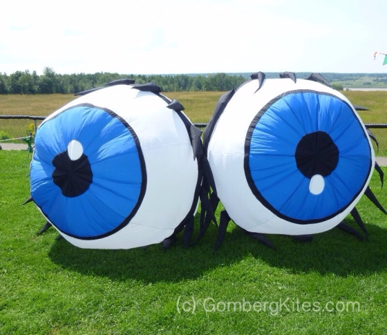 Eyeball Kites by GombergKites.com